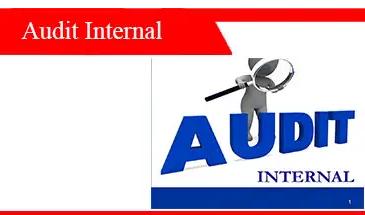Audit-internal-tujuan-ruang-lingkup-langkah-dan-contoh